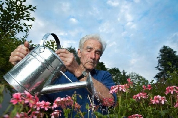 Gardening Tips for People with Alzheimer's