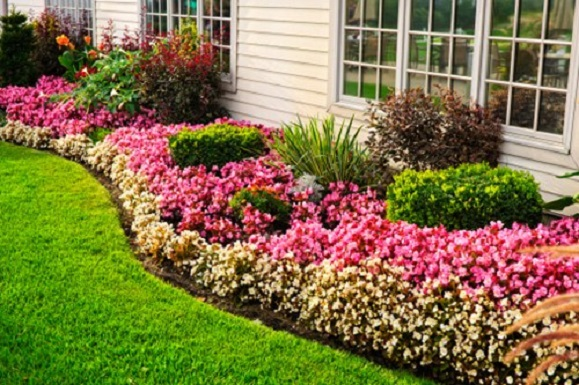 3 Easy Steps to Building Garden Beds