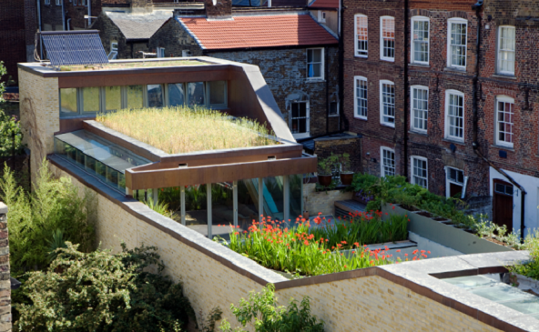 Maximising your garden with a green roof