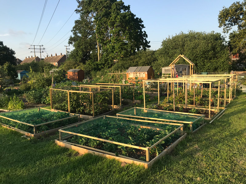 Earth Cycle Allotment