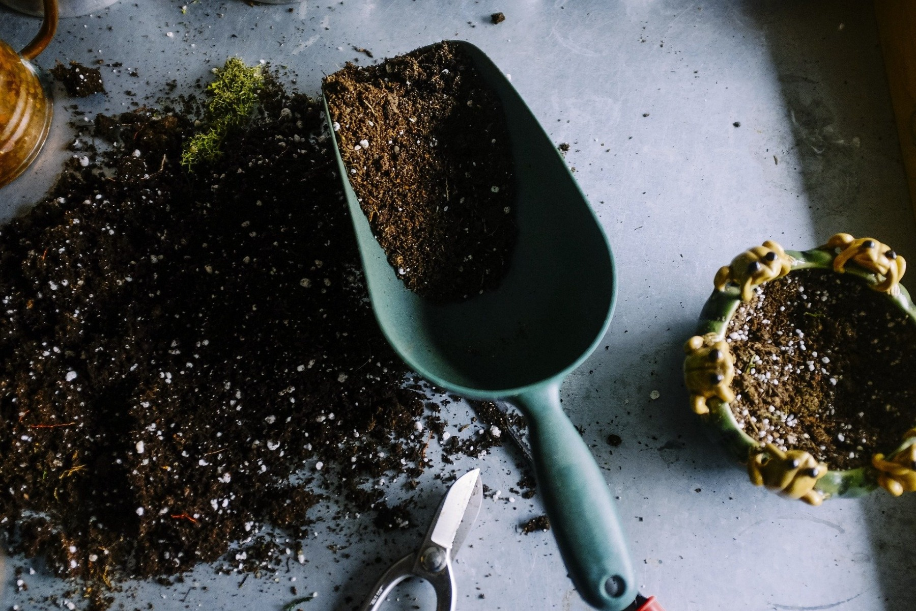 Soil Scoop Potting Compost