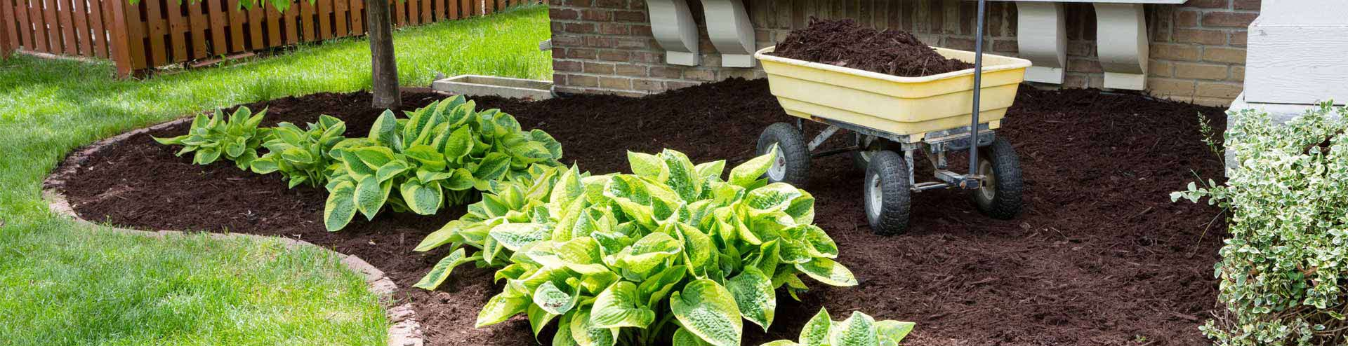 Boost your beds and borders